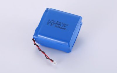 LiPo Battery LP224545 2P 3.7V 6000mAh 22.2Wh with protection circuit and wires 50mm and JST PHR-2